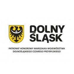logotyp_patronat_marszalka_pion-przybylski-1 (1)